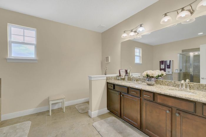 7593-lake-albert-dr--windermere--fl-34786---31---bathroom.jpg