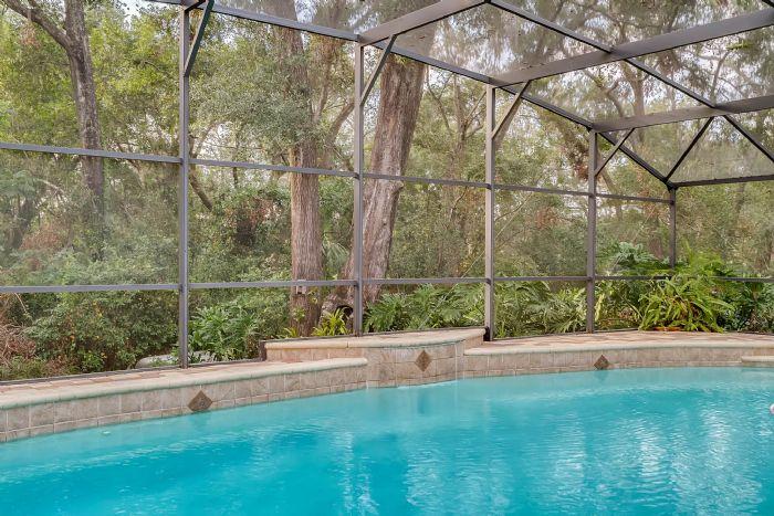 768-woodcraft-dr--apopka--fl-32712----07---pool.jpg