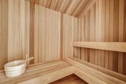 12824-Jacob-Grace-Ct--Windermere--FL-34786---15---Sauna.jpg