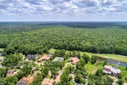 3019-Alatka-Ct--Longwood--FL-32779----39---Aerial.jpg