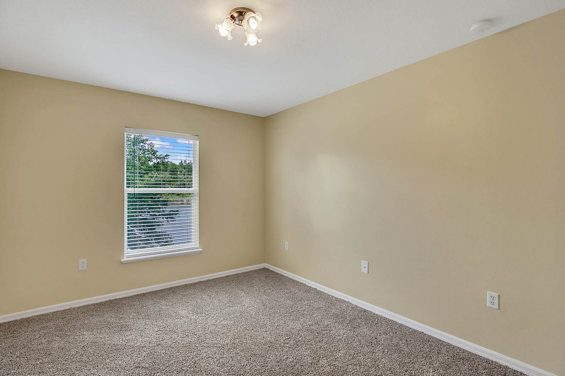 3205-Bellericay-Ln.-Land-O-Lakes--FL-34638--17--Bedroom-2.jpg
