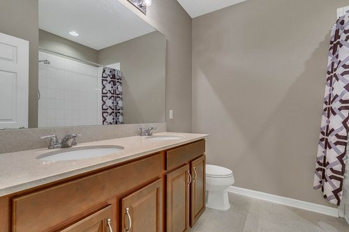 556-Blue-Cypress-Dr--Groveland--FL-34736----24---Bathroom.jpg