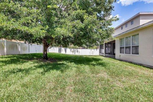 13239-Jervey-St--Windermere--FL-34786---26---Backyard.jpg
