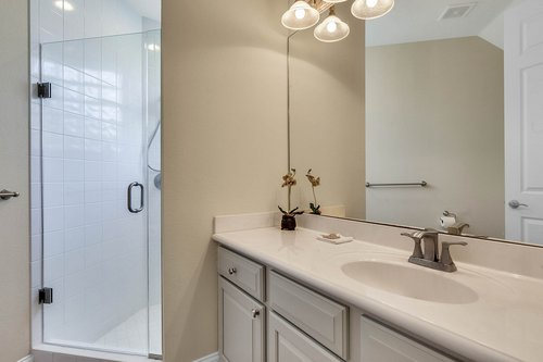 8712-Scenic-Oak-Ct--Orlando--FL-32836---18---Bathroom.jpg