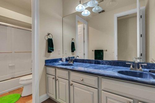 8712-Scenic-Oak-Ct--Orlando--FL-32836---24---Bathroom.jpg