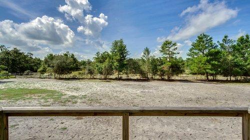 2421-Lake-St--Deltona--FL-32738----34---Grounds.jpg