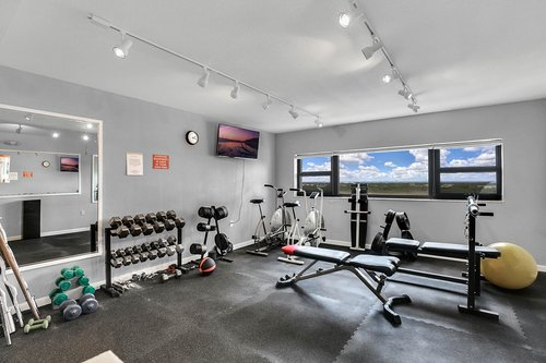 4141-Bayshore-Blvd.--1603-Tampa--FL-33611--37--Weight-Room.jpg