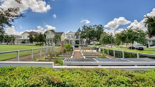 830-Easley-Ave--Winter-Garden--FL-34787----50---Community-Amenitites.jpg