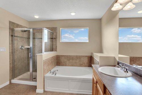 9017-Sienna-Moss-Ln.-Riverview--FL-33578--25--Owner-s-Bath-1---2.jpg