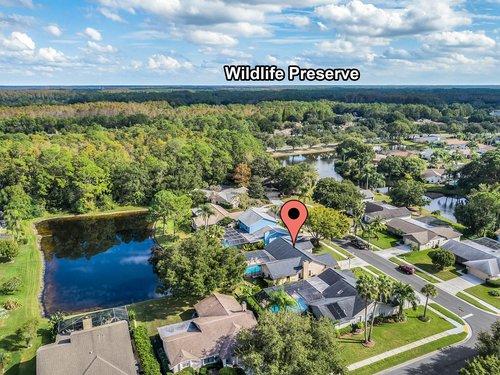3221-Oakwood-Pl.-Tarpon-Springs--FL-34688--39--Aerial-1---8-Edit-Edit.jpg