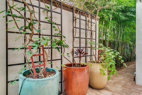 8137-Via-Vittoria-Way--Orlando--FL-32819----36---Backyard.jpg