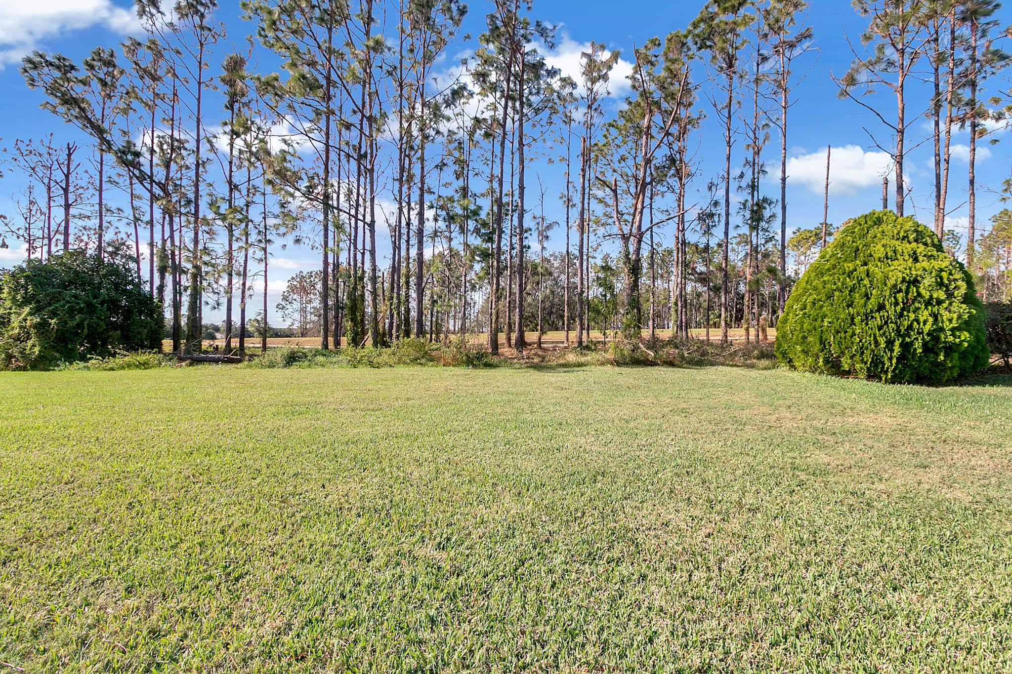 229-N-Hampton-Dr--Davenport--FL-33897----29---Backyard.jpg