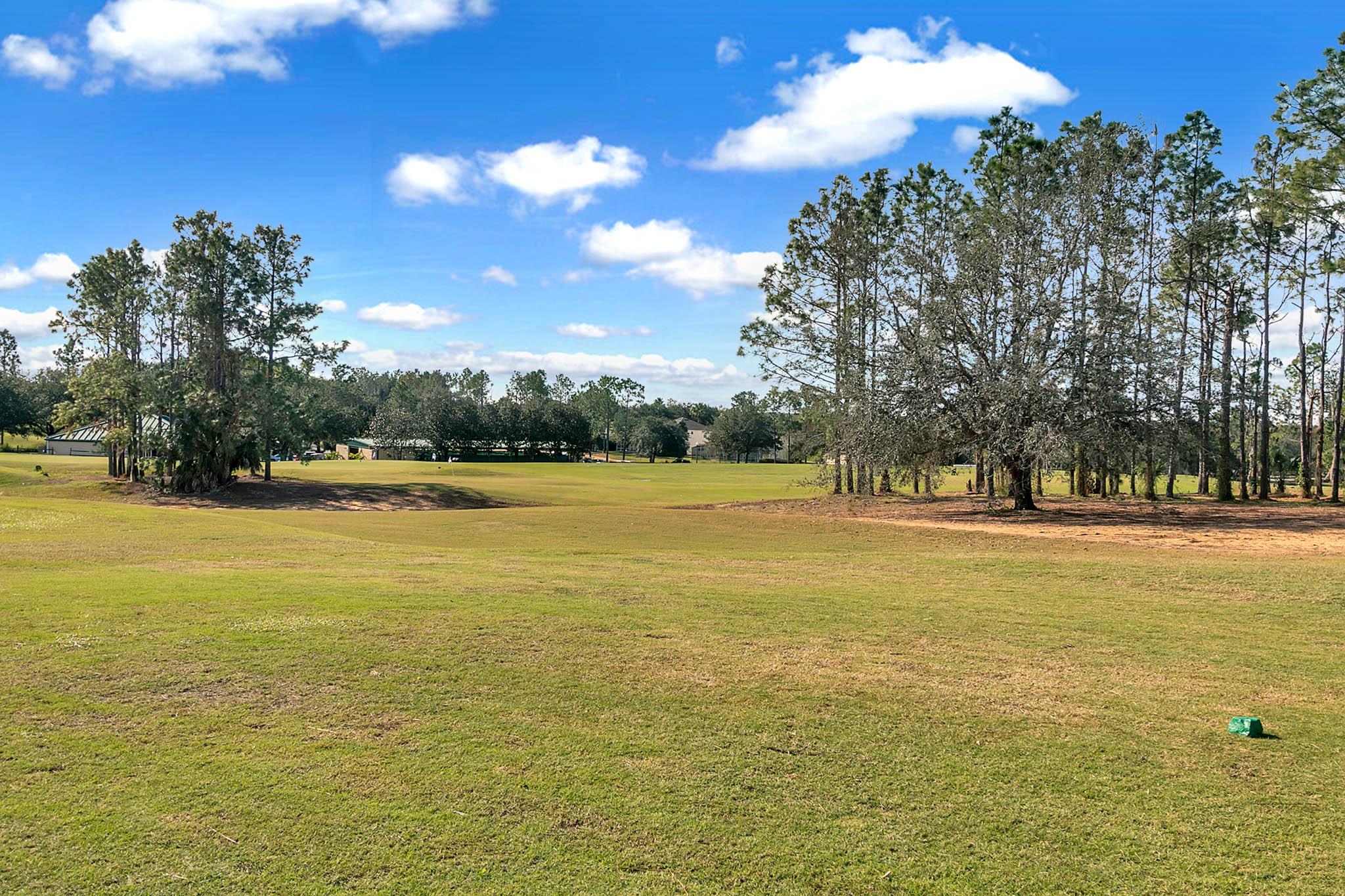 229-N-Hampton-Dr--Davenport--FL-33897----30---Backyard.jpg