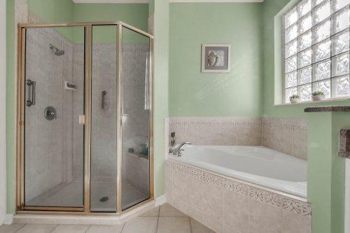 8015-St-James-Way--Mt-Dora--FL-32757----14---Master-Bathroom.jpg