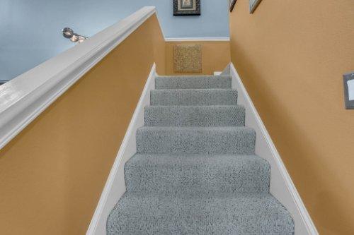 1187-Shipwatch-Circle-Tampa--FL-33602--31--Stairs.jpg