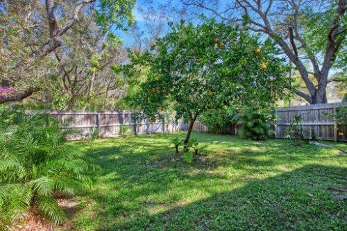 7101-Tallowtree-Ln--Orlando--FL-32835----34---Backyard.jpg