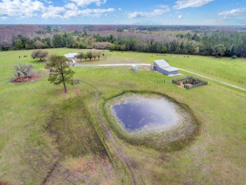 751-Brantly-Rd--Osteen--FL-32764----34---Aerial.jpg