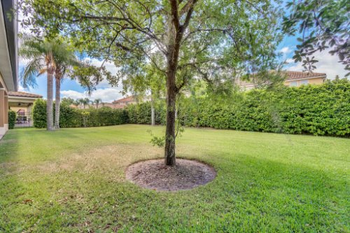 1241-Bella-Vista-Cir--Longwood--FL-32779----35---Backyard.jpg