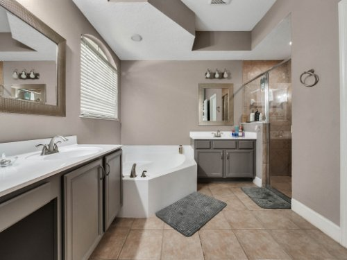 1029-Hanging-Vine-Point--Longwood--FL-32750----24---Master-Bathroom.jpg