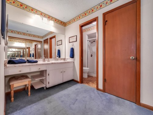 544-Tiberon-Cove-Rd--Longwood--FL-32750----21---Master-Bathroom.jpg