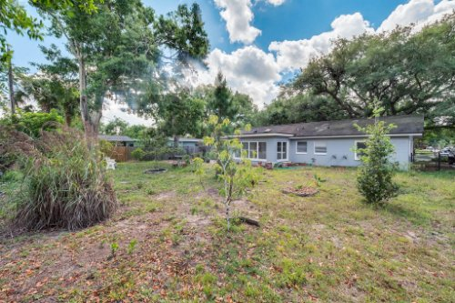 157-Birchwood-Dr--Maitland--FL-32751----24---Backyard.jpg