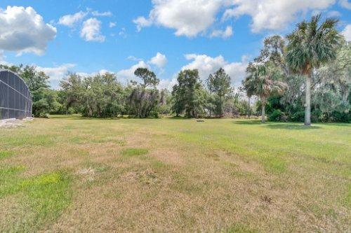 295-butterfly-forest-rd--geneva--fl-32732----37---backyard.jpg