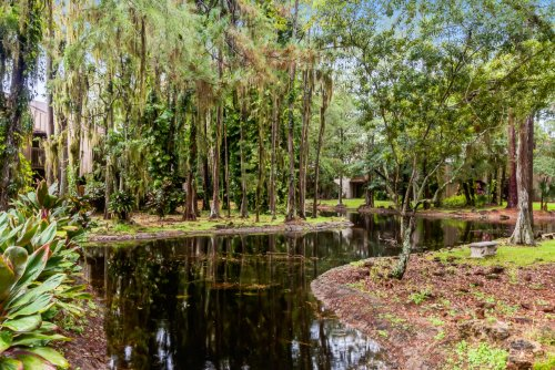 cypress-woods--2-.jpg
